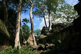 ta prohm the jungle temple funkinaround