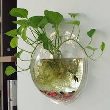 amazon com sweetsea creative acrylic hanging wall mount fish tank