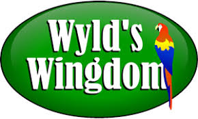 How Much Light Does Your by How Much Natural Light Does Your Pet Bird Need Wyld U0027s Wingdom