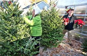 Christmas Tree Farm Va - state christmas tree farms provide fresh products for locals