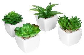 mini artificial succulent plants in sleek white ceramic pots set