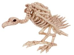 halloween decorations skeleton amazon com crazy bonez skeleton vulture toys u0026 games