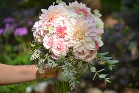 wedding flowers august wedding flowers from springwell cafe au lait dahlias and pink