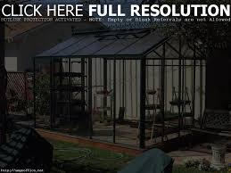 small green house plants how to use a mini greenhouse picture with