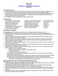 Clinical Manager Resume Formal Entry Level Project Manager Resume Featuring Strategic