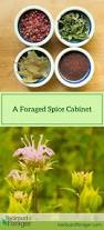 391 best herbal cookery images on pinterest fresh herbs