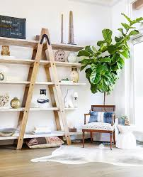 Fiddle Leaf Fig Tree Care by 5 Tips From The Experts For Your Fiddle Leaf Fig Tree Home Heart