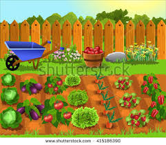garden clipart fruit and vegetable pencil and in color garden