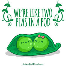 two peas in a pod picture frame peas vectors photos and psd files free
