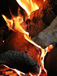 free images wood adventure smoke food flame campfire meat