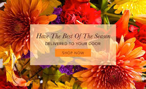 Thompson Florist by Bristol Florist Flower Delivery By Bristol Florists