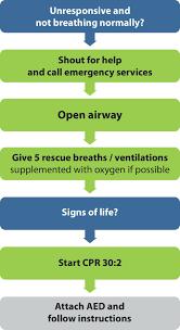 european resuscitation council guidelines for resuscitation 2015