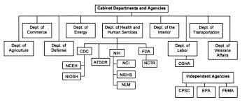 Us Cabinet Agencies Image Gallery Executive Agencies