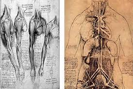 design like da vinci sketching lessons from the original