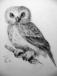 detailed owl by therealgerman on deviantart