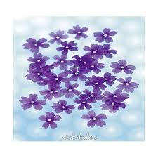edible blue flowers dried edible blue verbena flowers 50 units