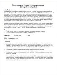 Dna Rna And Protein Synthesis Worksheet Brown Science Reinforce Protein Synthesis With This