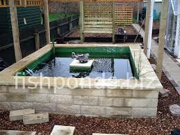 How To Make A Koi Pond In Your Backyard by Building A Concrete Koi Fish Pond