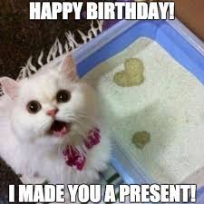 Happy Cat Meme - 45 cat birthday memes wishesgreeting