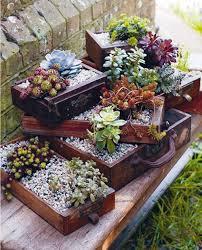 planter for succulents 20 succulent planters you ll love
