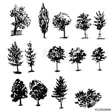 drawing collection of 14 elements of different types of trees