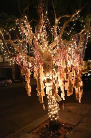 wishing tree san francisco s wishing tree grows hopes and dreams