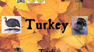 greek word for thanksgiving turkey thanksgiving and global food systems youtube
