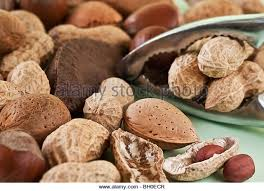 christmas nuts mixed nuts christmas stock photos mixed nuts christmas stock