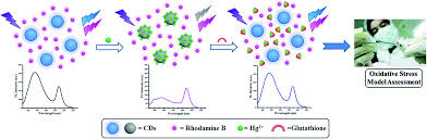 carbon dots based ratiometric nanosensor for highly sensitive and