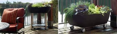 balcony garden ideas and solutions garden365