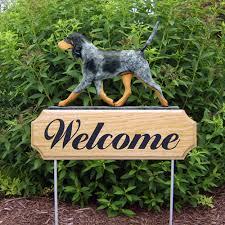 buy a bluetick coonhound puppy bluetick coonhound