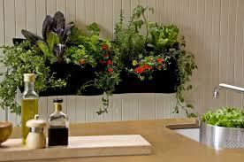 stunning indoor garden kits gallery interior design ideas