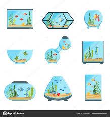 types of aquarium aquarium tanks set different types of aquariums with plants and