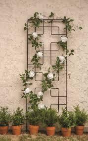 92 best rambling vine supports images on pinterest garden