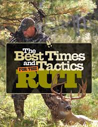 Best Deer Hunting Blinds Best 25 Deer Hunting Blinds Ideas On Pinterest Bow Hunting Tips