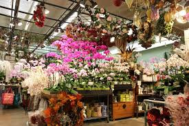flowers los angeles how to shop at the los angeles flower market ounce of salt