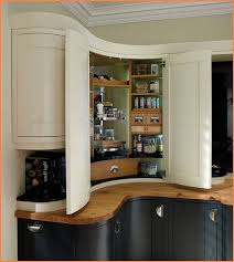 Black Corner Cabinet For Kitchen by Cabinet Wonderful Corner Pantry Cabinet Ideas White Corner Pantry