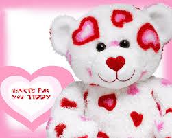 best teddy bear pic download wallpaper hd