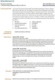 how to write a career change resume career change resume example