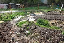 new garden beds part 1 garden tour