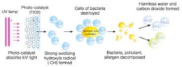 how ultraviolet light kills bacteria how tio2 uv pco oxidation works air oasis uv air cleaners