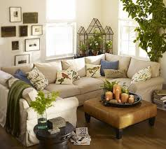 plants for decorating home home design shab chic living room with lavender indoor plants