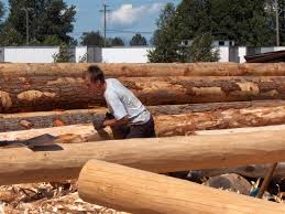 hand peeled logs for log cabin construction