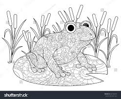 frog on lily swamp coloring book stock illustration 632763542