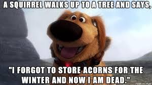 Dead Squirrel Meme - hey i know a joke meme on imgur