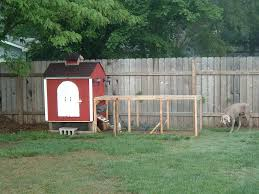 Backyard Chicken Coop Ideas Backyard Chicken Coop Backyard Chicken Coop Ideas Backyard Chicken