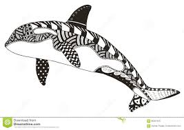 killer whale zentangle stylized vector illustration freehand