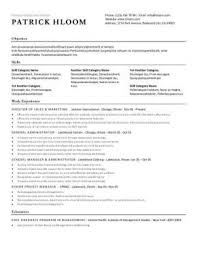 resume formats 4 professional brick red nardellidesign com
