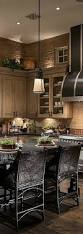 Over Cabinet Lighting For Kitchens Best 25 Above Kitchen Cabinets Ideas On Pinterest Closed