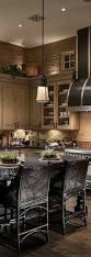 Kitchen Cabinets Lighting Best 25 Beige Kitchen Cabinets Ideas On Pinterest Beige Kitchen